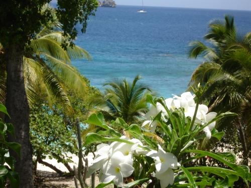 Virgin Islands National Park, St. John, USVI; Photo:KFawcett