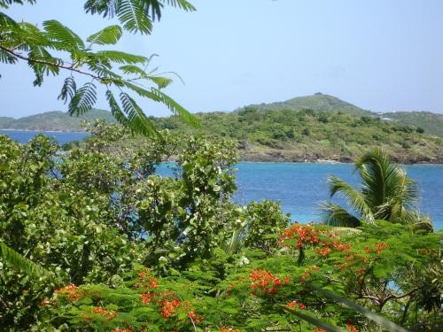 St. John, US Virgin Islands; Photo:KFawcett