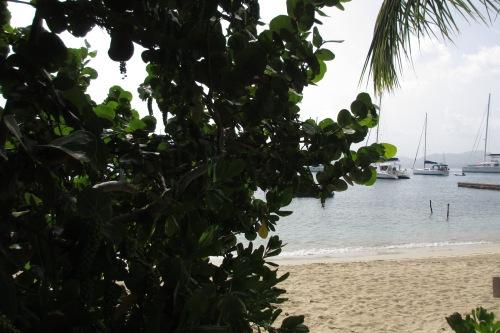 Machioneel Bay, Cooper Island; Photo:KFawcett