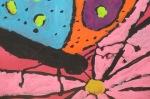 Butterfly; DFawcett