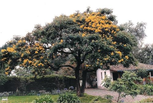 Hacienda Cusin; Photo:MFawcett