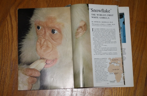 from National Geographic, March 1967
