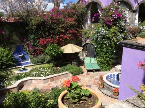 Garden in San Miguel; Photo:KFawcett