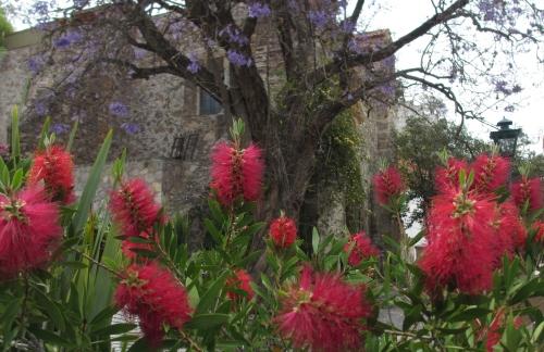 San Miguel de Allende; Photo:KFawcett