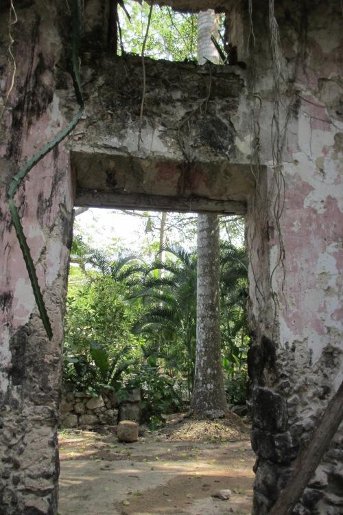 Ruin on the grounds of Hacienda Chichen, Yucatan; Photo:KFawcett