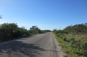 Road to Celestun, Yucatan; Photo:KFawcett