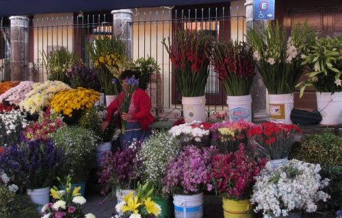 El Mercado, San Miguel de Allende; Photo:KFawcett
