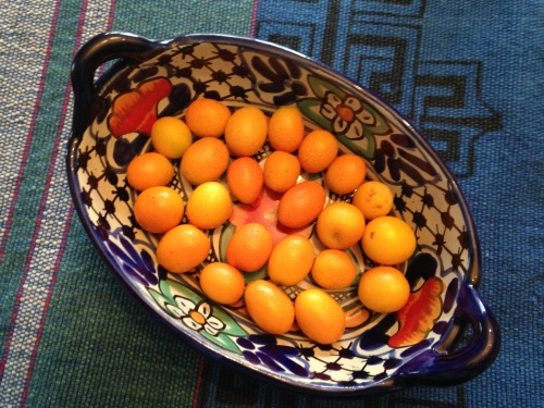 Kumquats; Photo:KFawcett