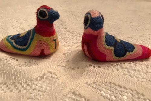 mexbirds